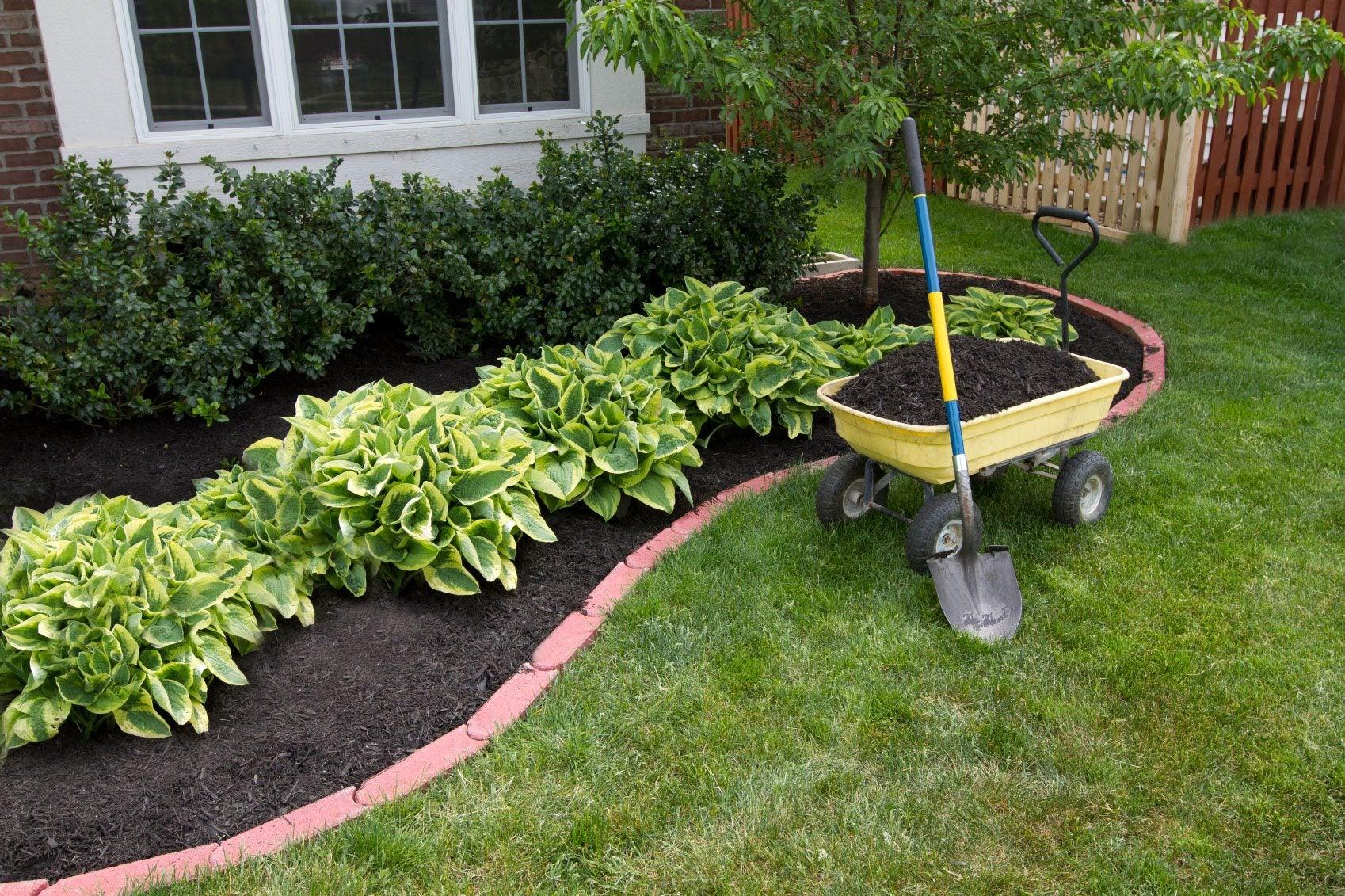 Mulch Selection Info - Choosing Mulch For Gardens