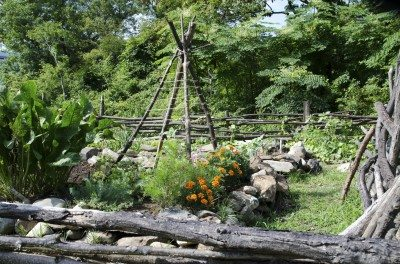 High Quality Teepee Garden Trellis: Using Teepee Structures In The Vegetable Garden