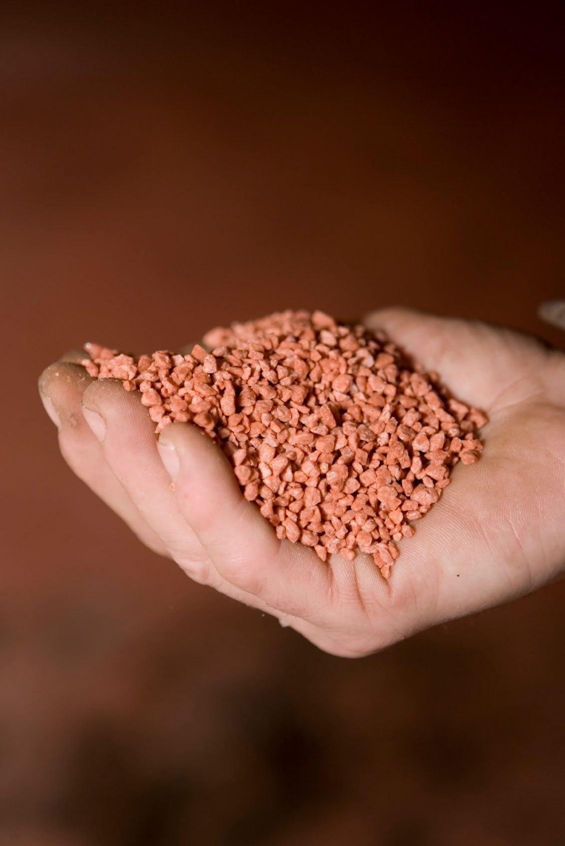 Potash And Plants Learn About Potash In Soil And Potash Fertilizer