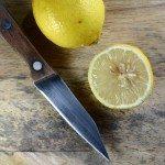 citrus-seeds