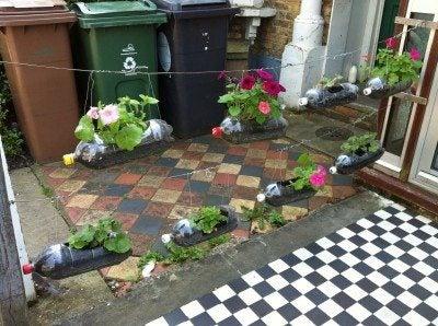 Garden in a bottle: growing soda bottle terrariums & planters with kids