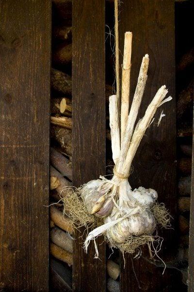 Garlic on a string