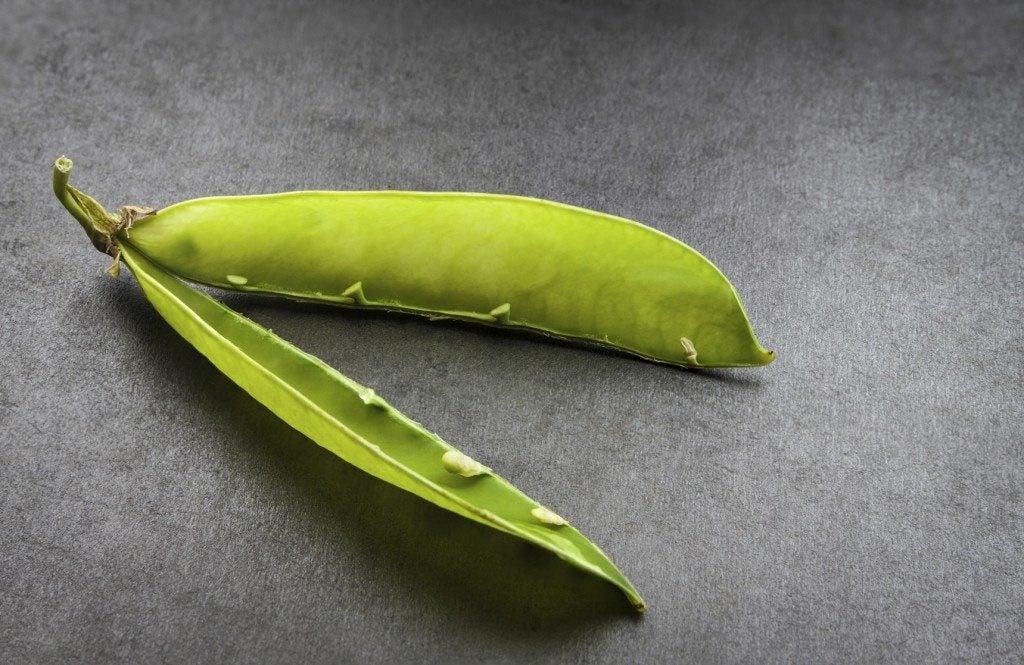empty pea pod