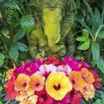 hindu garden