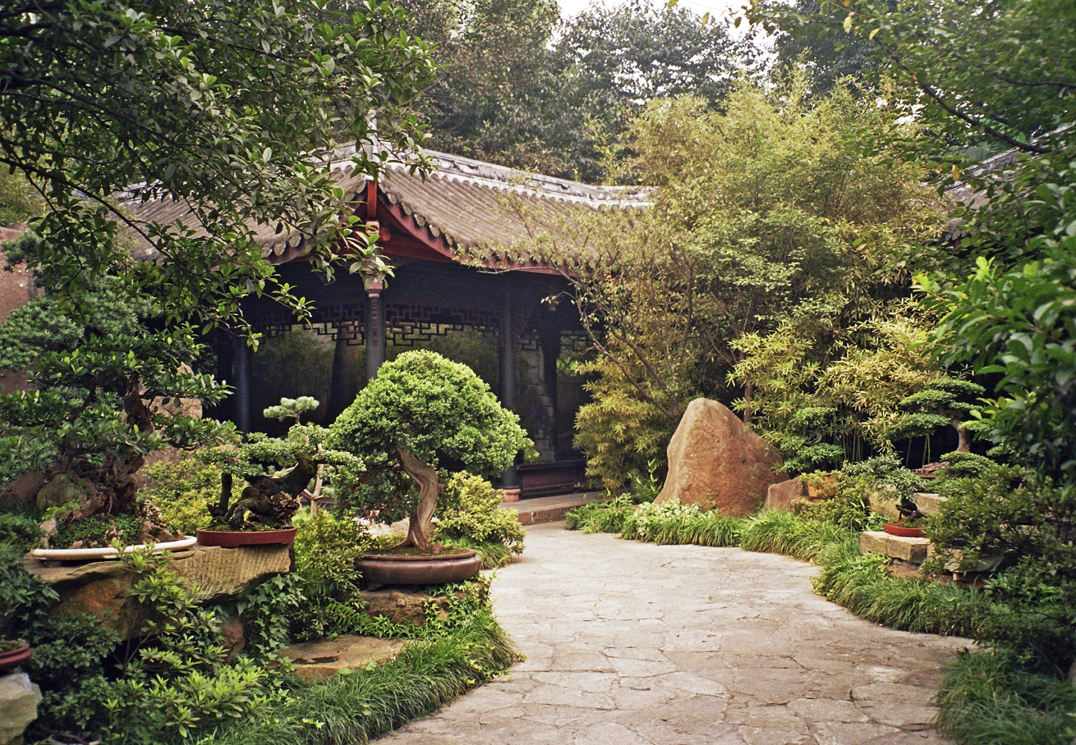 Chinese Garden Plants - How To Create A Chinese Garden Style