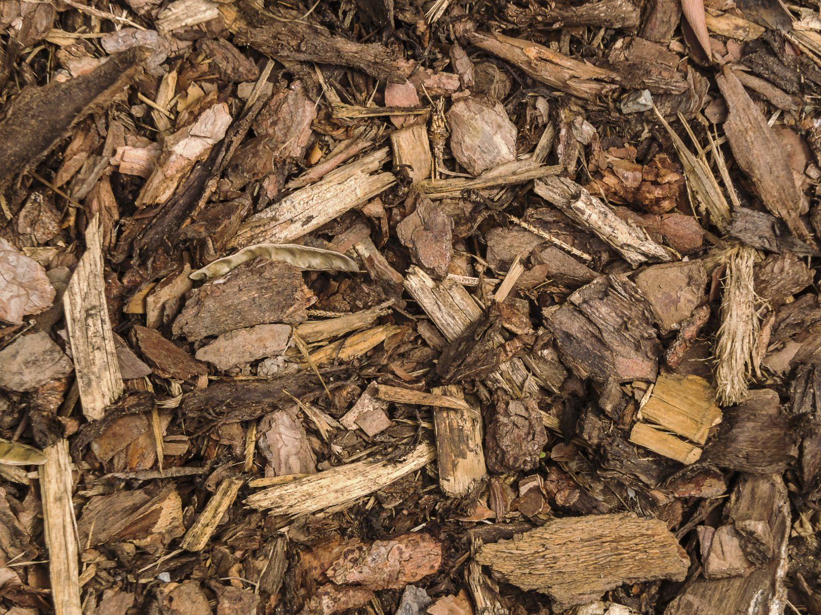 Where To Get Wood Chips ~ Benefits of wood mulch are chips good for gardens