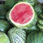 Watermelons at Fruit Stand Closeup