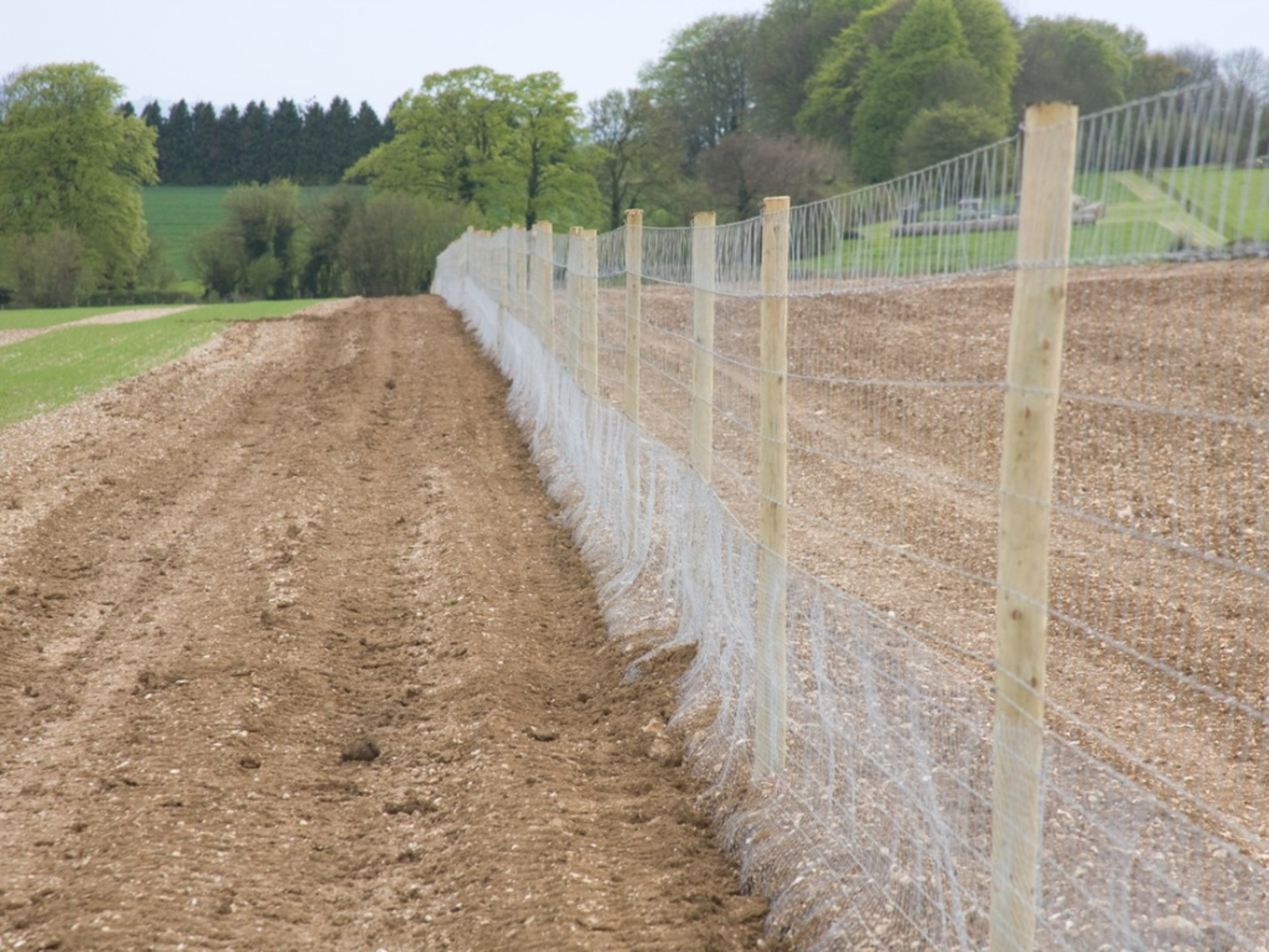 Attractive Deer Proof Fencing Tips On Building A Fence