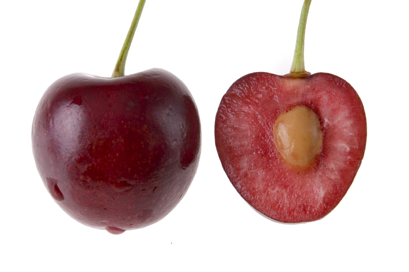 Seed Planting Cherry Trees How To Grow Cherry Trees From Pits