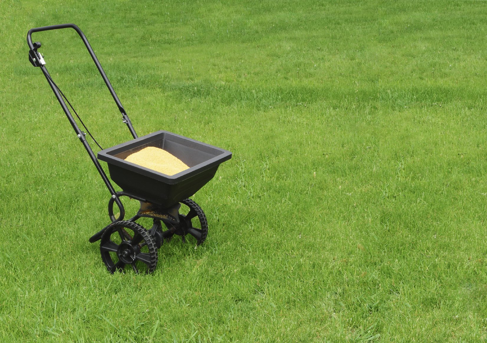 Types Of Lawn Fertilizer What Is The Best For Gr