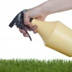 homemade lawn fertilizer