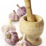 garlic pests