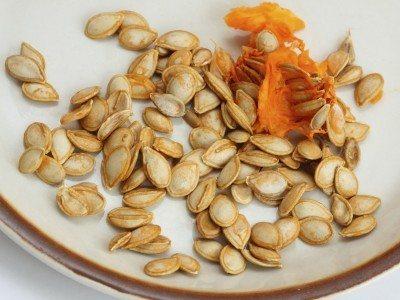 Closeup of orange  pumpkin pulp and seeds on a plate.