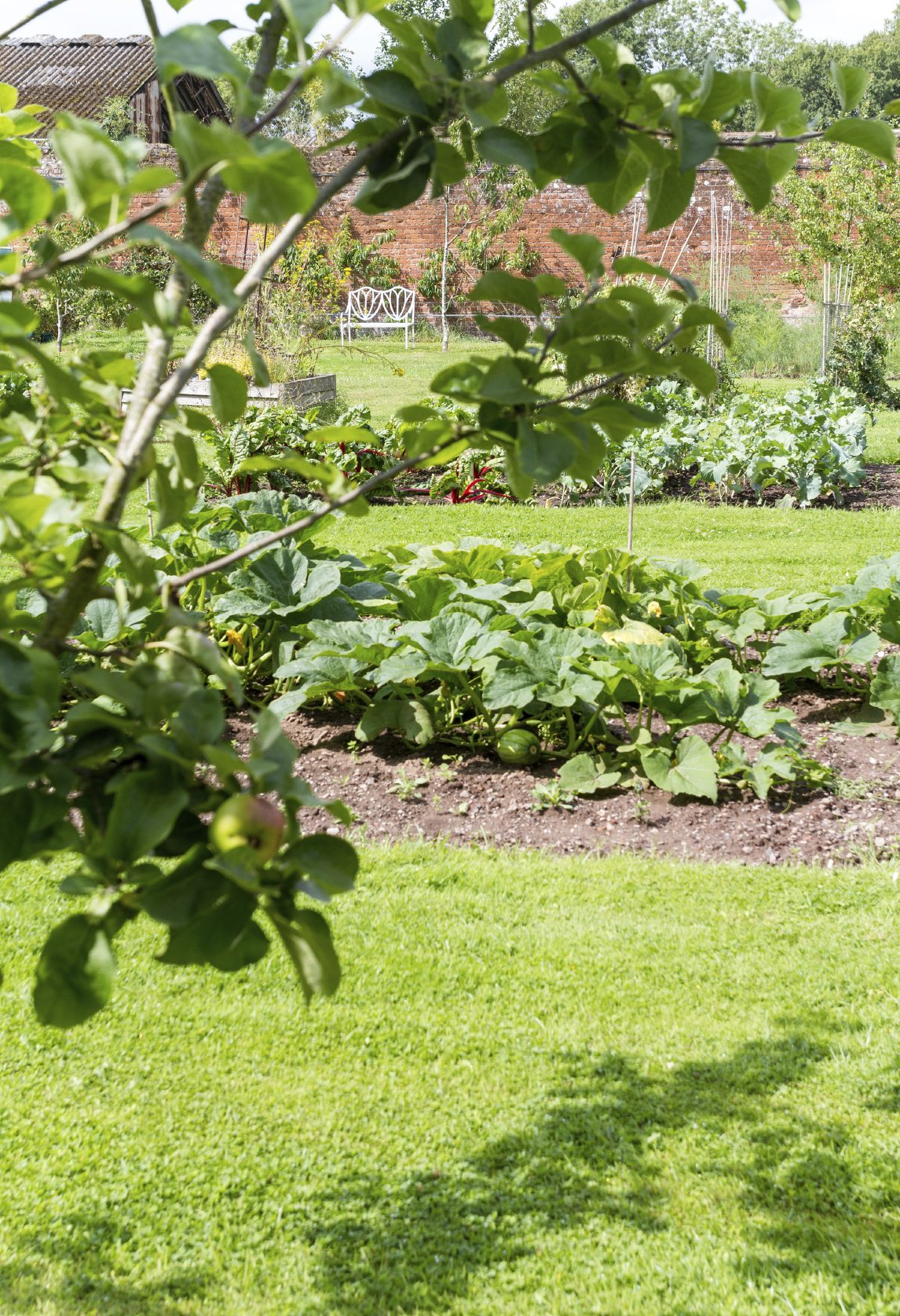 what is a survival garden learn about family survival