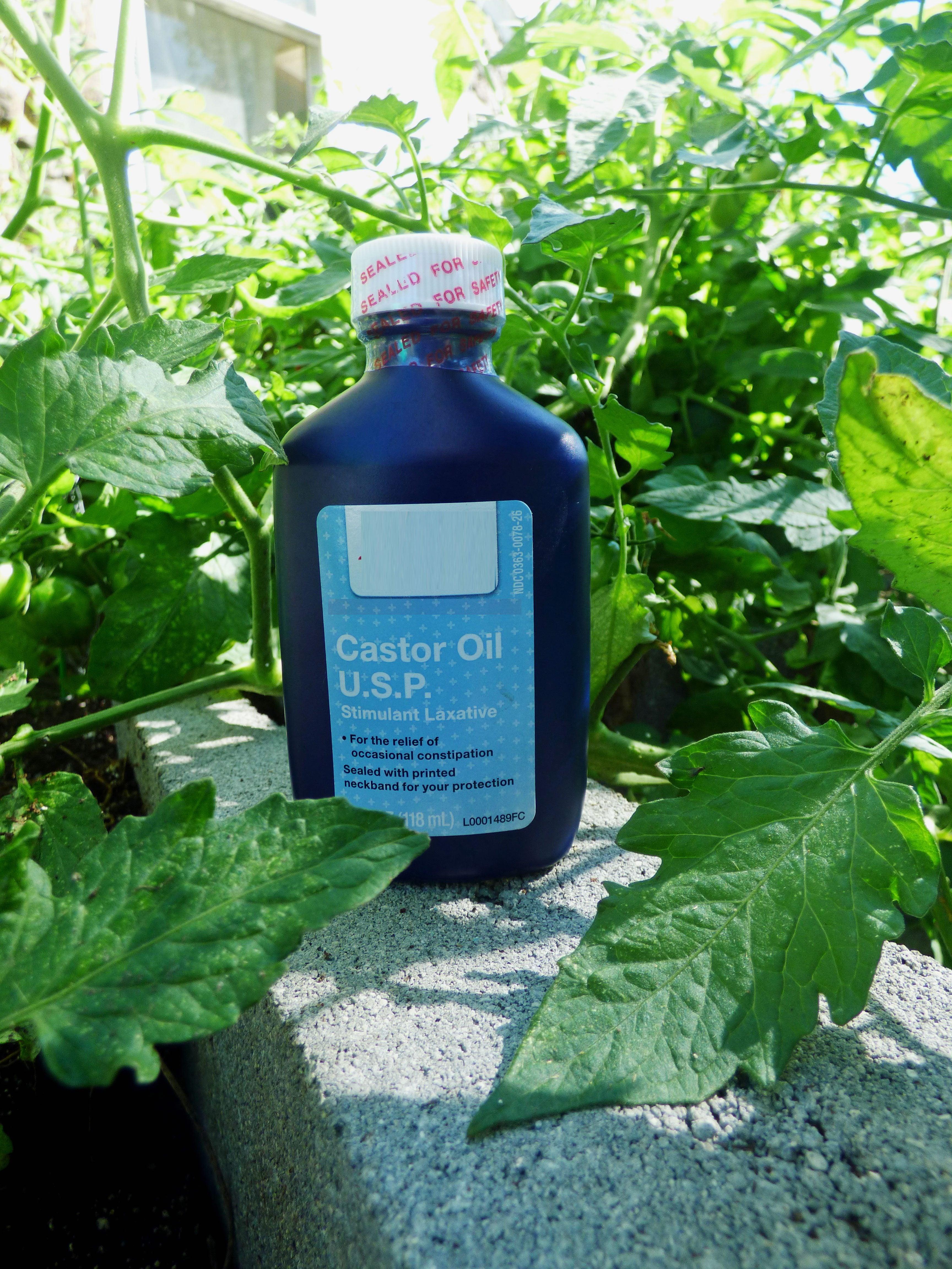 castor oil - Is Castor Oil Safe For Vegetable Gardens