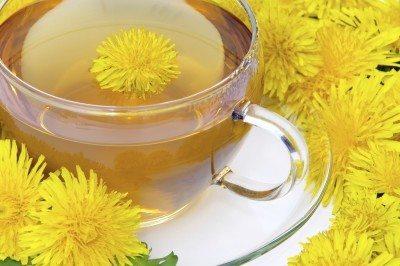 Making dandelion fertilizer tea: tips on using dandelions as fertilizer
