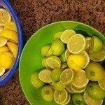 different fruit same tree - Drent