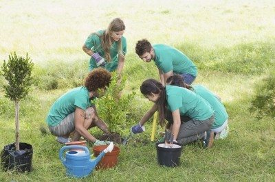 Volunteers in community gardens – tips for starting a community garden