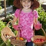 Little girl (8 years) in community garden with baskets of carrots, tomatoes and peppers.