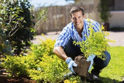 happy young man gardening in backyard
