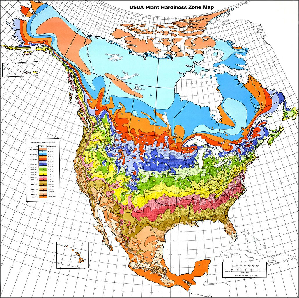 Understanding world hardiness zones plant hardiness Good house map