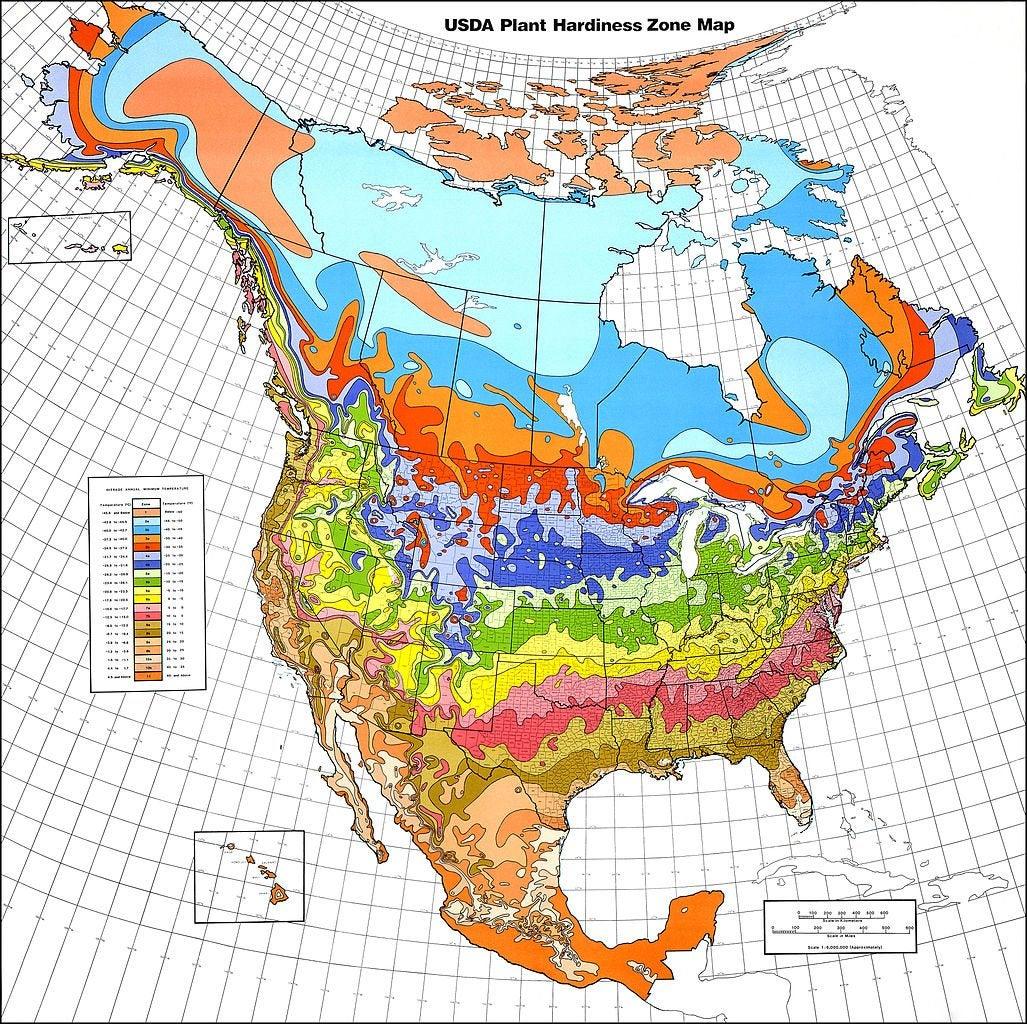 Map Of Planting Zones In Canada Understanding World Hardiness Zones   Plant Hardiness Zones In
