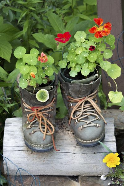 Garden upcycling ideas: learn about upcycling in the garden