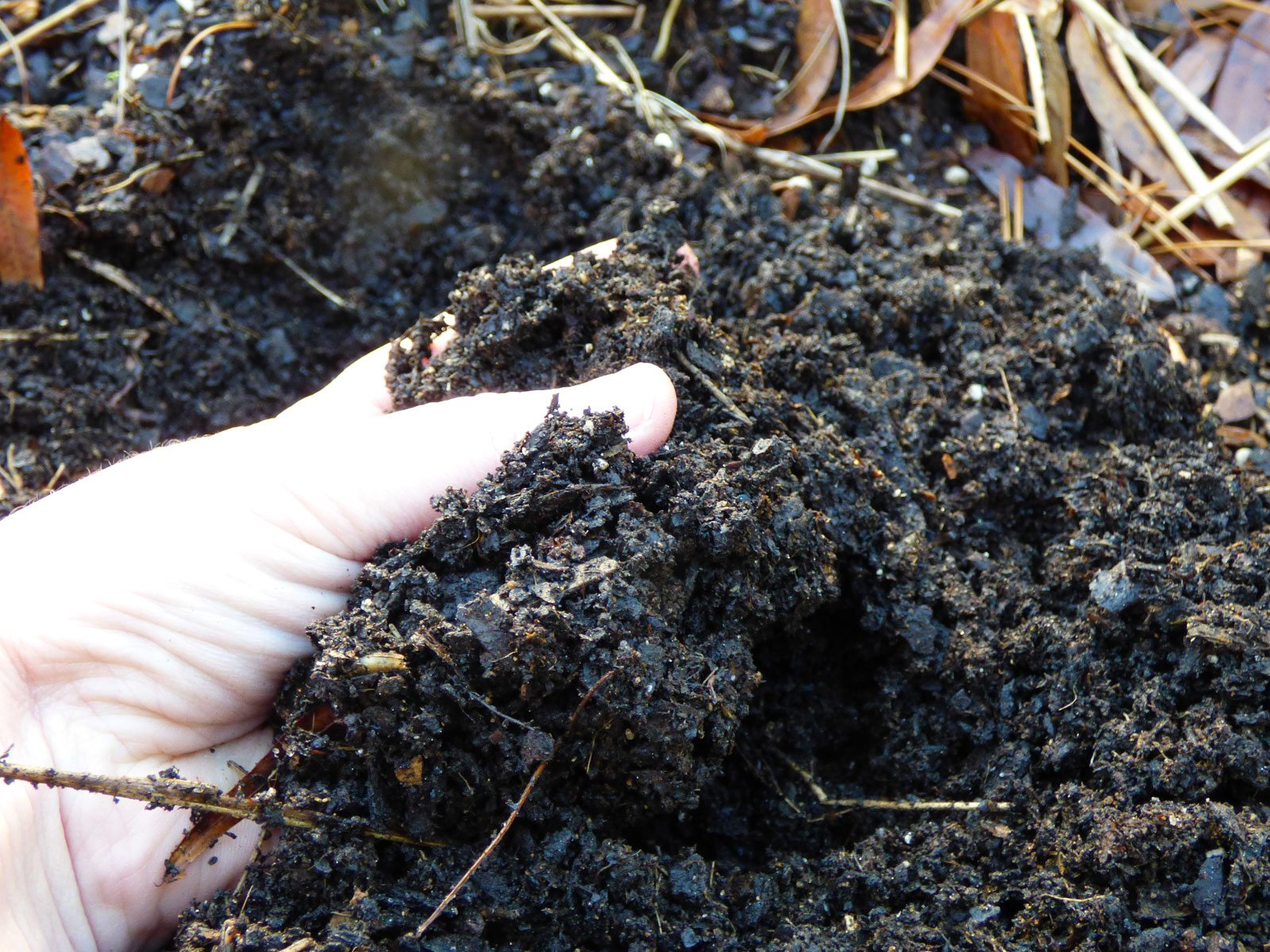 What is well draining soil learn about the importance of for Garden topsoil