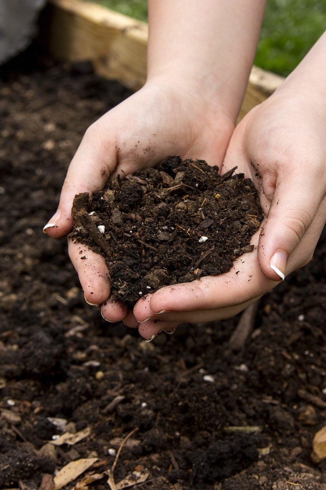 Raised garden bed soil which soil type for raised beds - Best mulch for raised bed vegetable garden ...