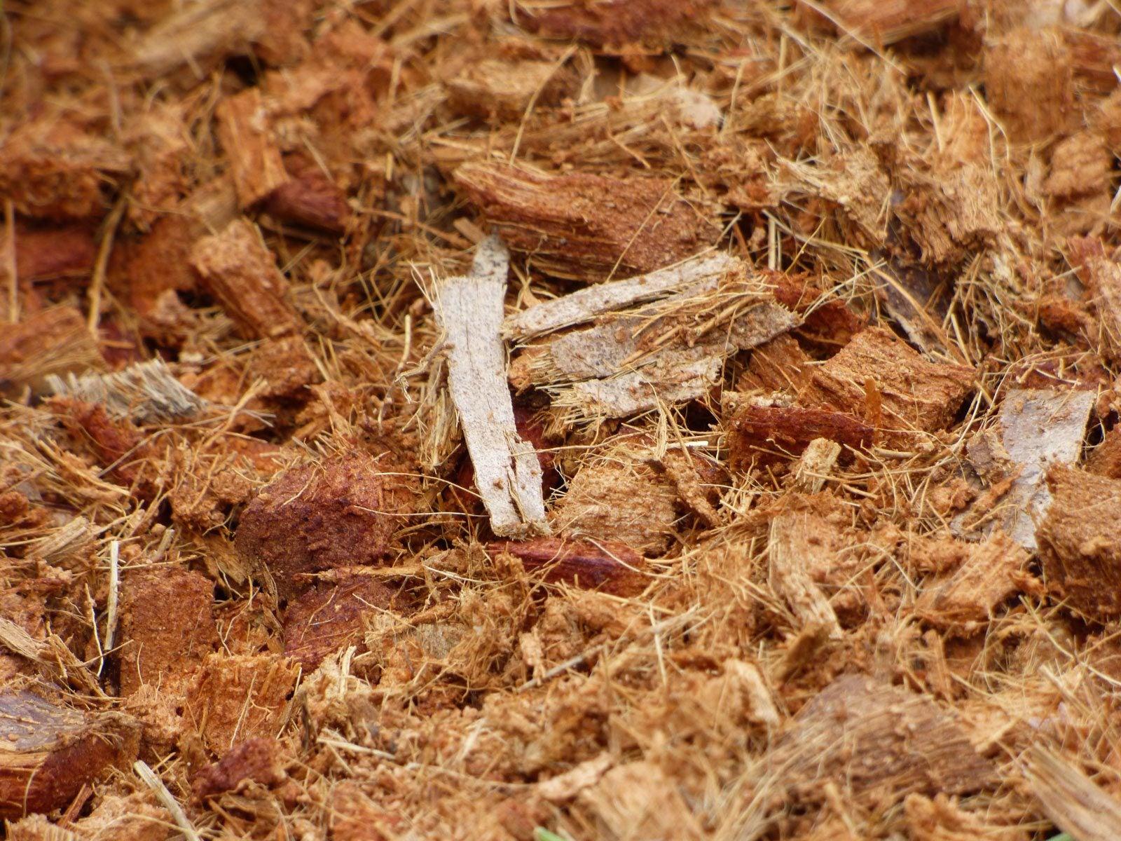 Coconut Coir Mulch Benefits Suggestions For Coir Mulch