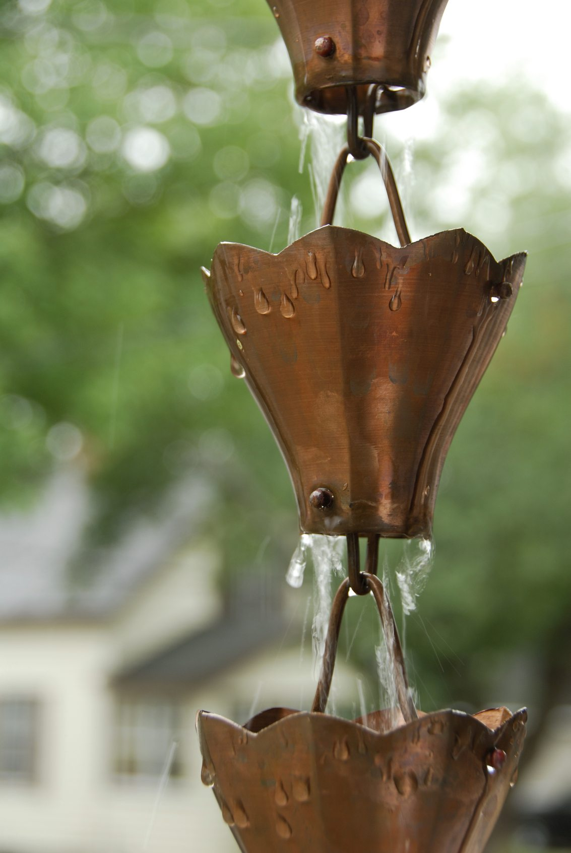 Garden Rain Chain Info Tips On Creating A Rain Chain In