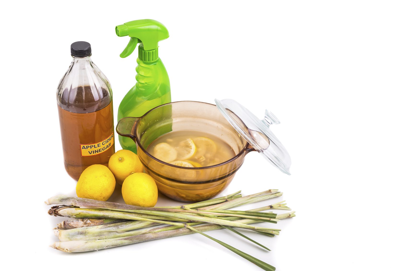 Eco Friendly Bug Spray Recipe Learn About Environmentally Friendly Bug Sprays