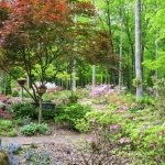 A beautifully landscaped garden in North Carolina. Birhouses, trees, flowers and bushes.