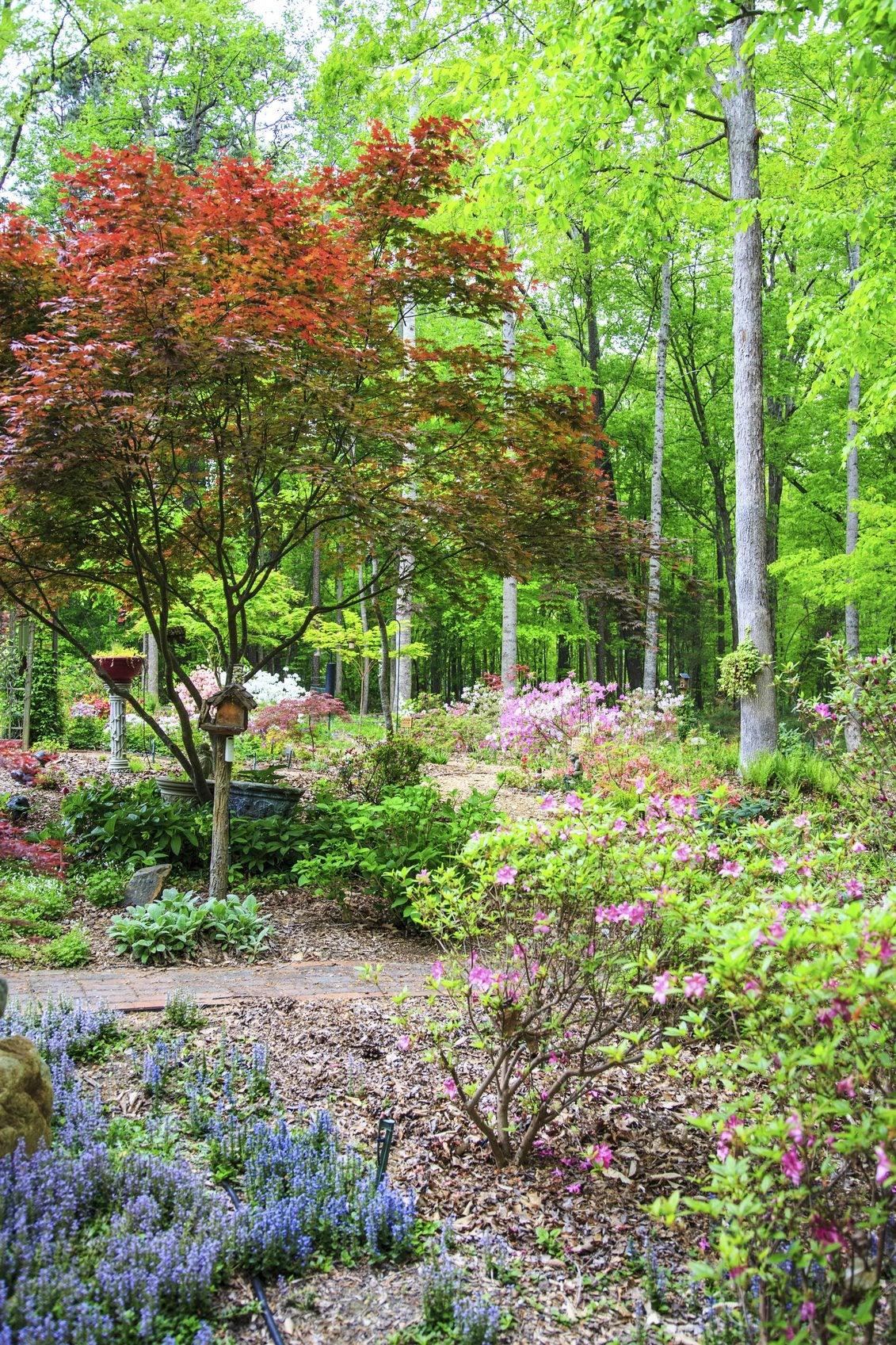 Tips On Gardening In Zone 10 - Garden Tips For Zone 10 Regions