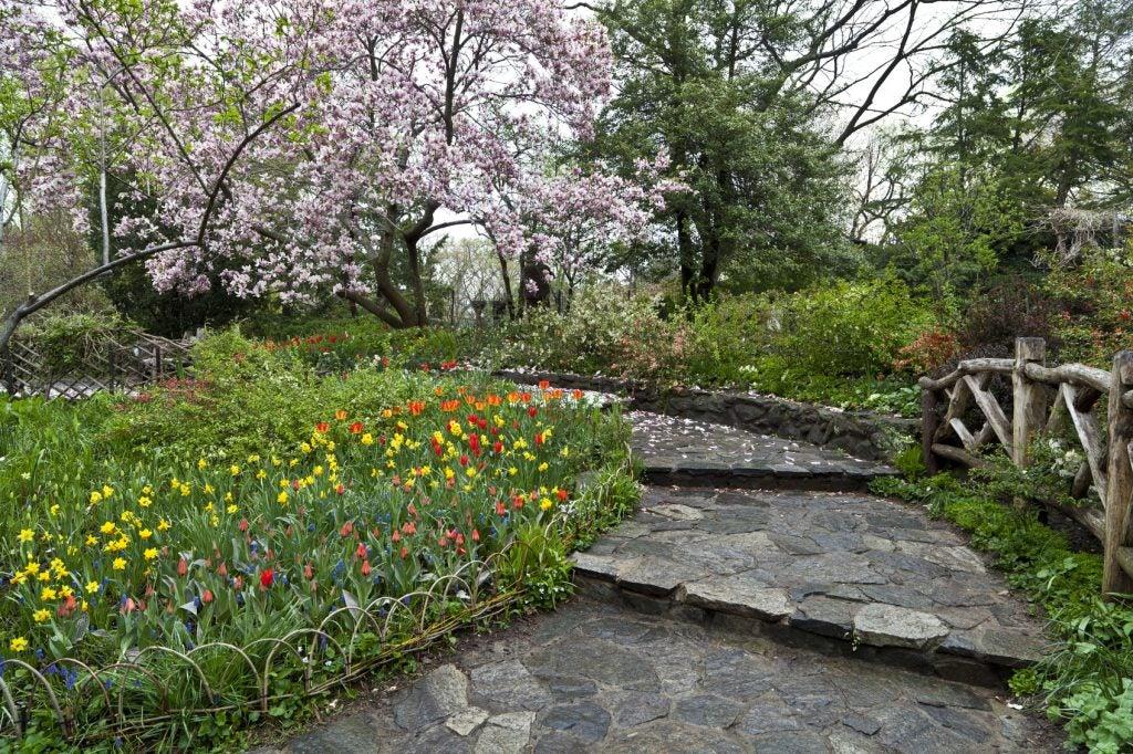 Shakespeare Garden Design - Learn About Gardens Inspired By Shakespeare