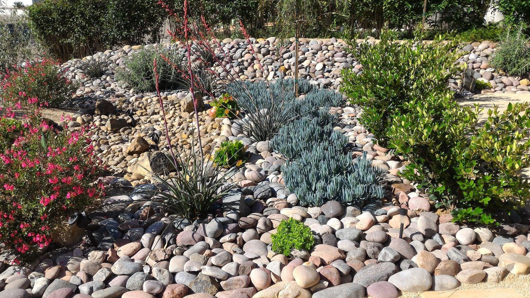 theme garden ideas