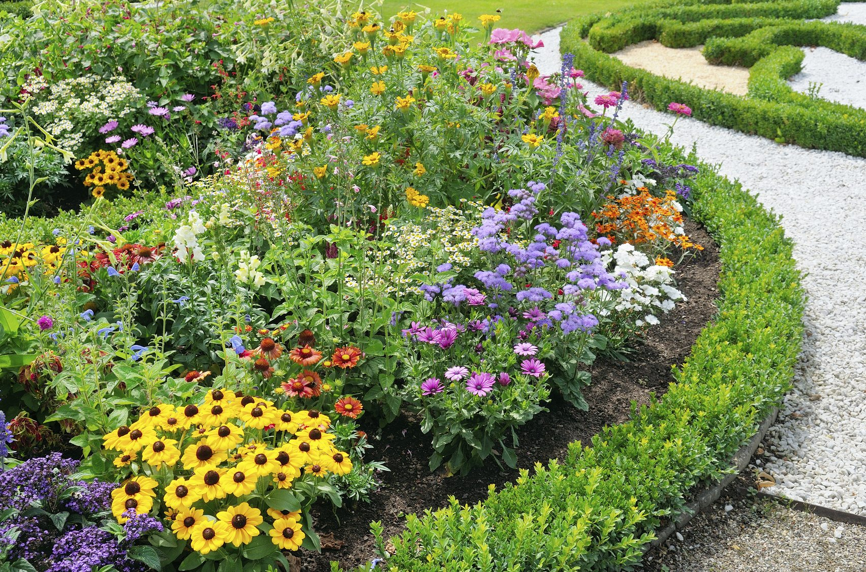 Flowers that look good together learn about annual and - The well tended perennial garden ...