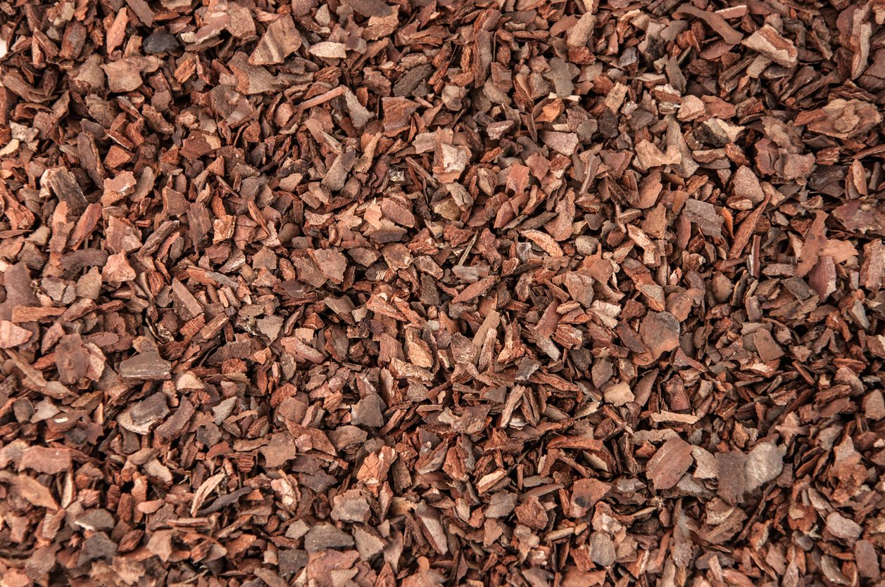 Pine Bark Mulch Uses Are There