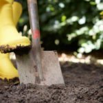 Information about gardening tools must have tools for for Gardening tools you must have