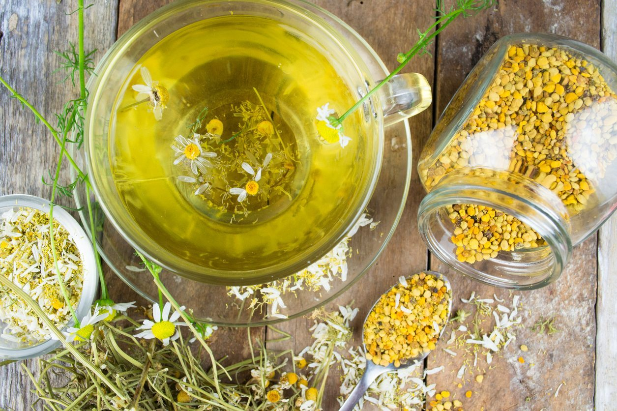 Eating chamomile plants what parts of chamomile are edible izmirmasajfo