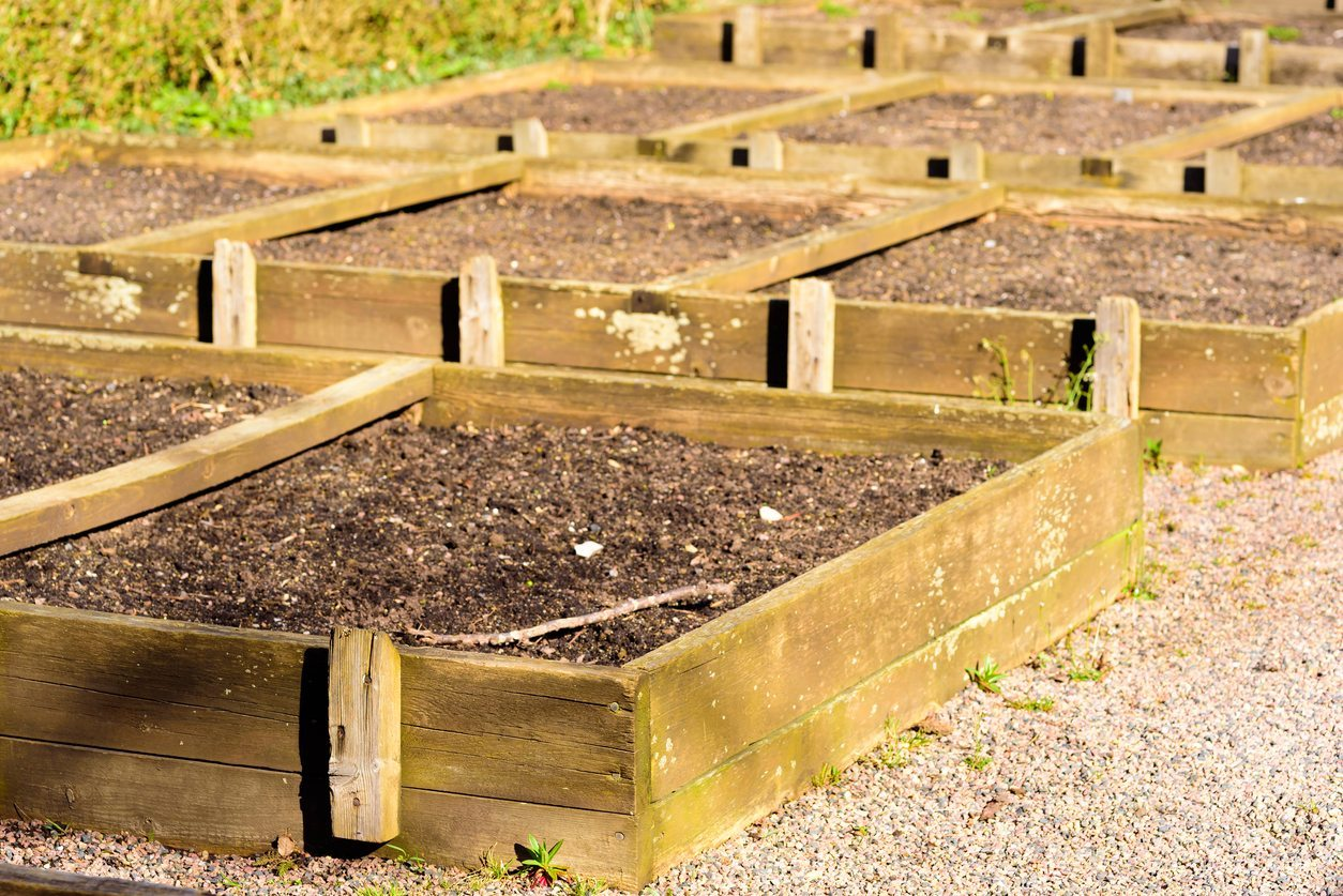 Soil Depth For Raised Beds Learn How Deep To Fill A Raised Bed