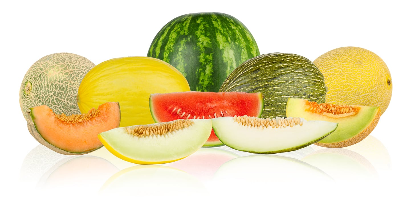 Zone 6 Melon Varieties Can You Grow Melons In Zone 6 Gardens