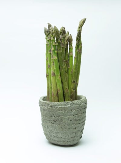Potted Asparagus Plants Can You Grow In Containers