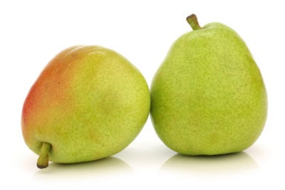 Growing Green Anjous How To Care For Anjou Pears