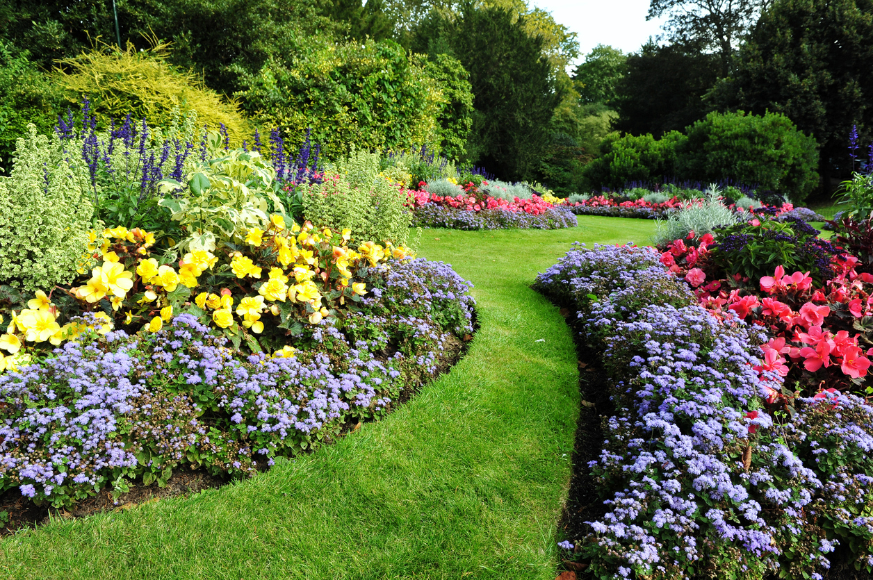 Asymmetric Garden Ideas How To Make An Asymmetrical Garden