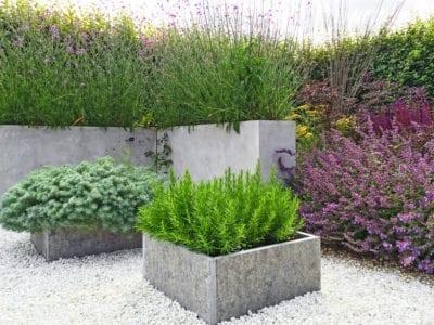 What Is A Contemporary Garden Learn About Contemporary Garden Design