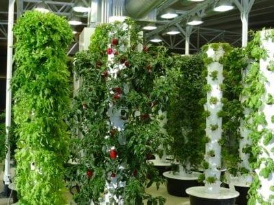 Homemade Garden Tower Ideas For Building A Tower Garden