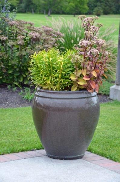 Urns Information On Garden Urn Planting, Garden Urns Planters