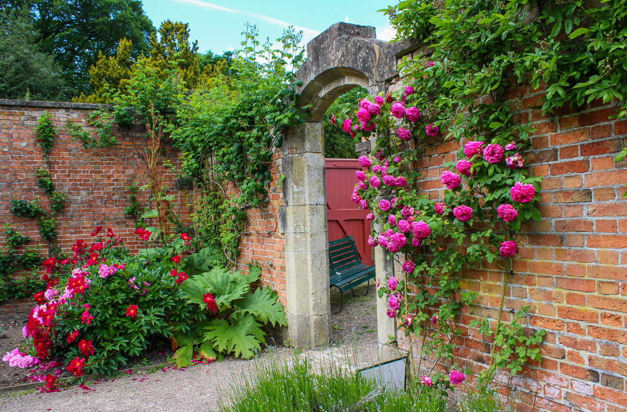 Landscaping Against Brick Walls What To Plant Near Brick Foundations
