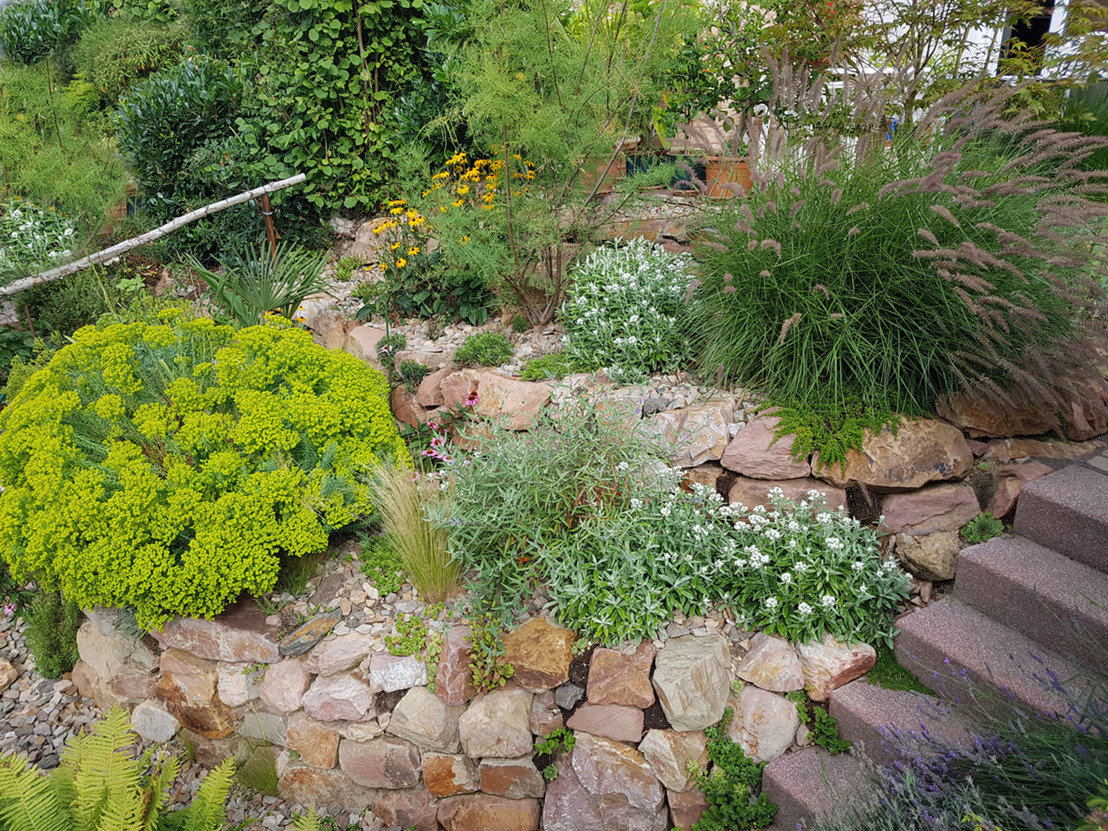 Sloped Rock Garden Design – Tips On Creating A Hillside Rock Garden